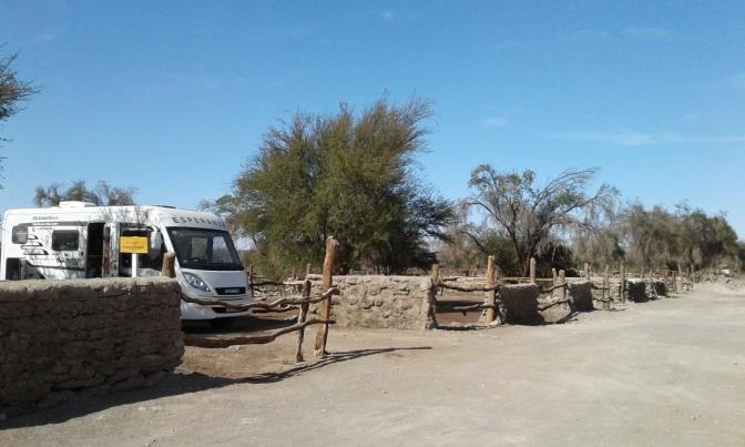Reserva de Tamarugal